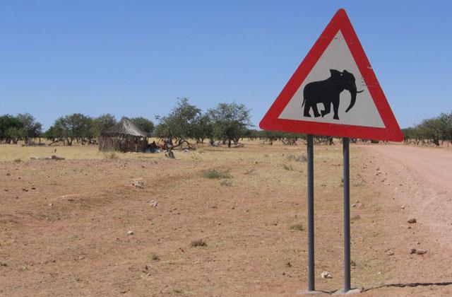 [Obrazek: Namibia032.jpg]