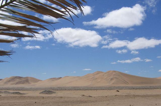 [Obrazek: Namibia087.jpg]