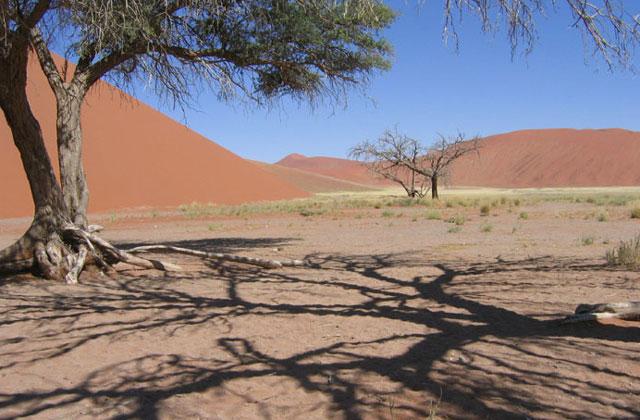 [Obrazek: Namibia095.jpg]