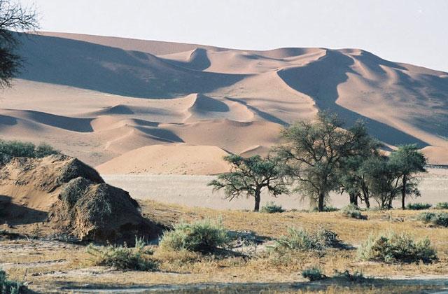 [Obrazek: Namibia098.jpg]