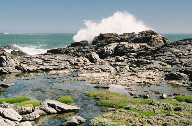 [Obrazek: Namibia102.jpg]