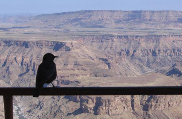 [Obrazek: Namibia113.jpg]
